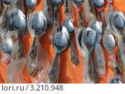 Именные ложки. Стоковое фото, фотограф Николай Будник / Фотобанк Лори