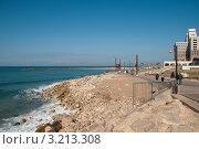 Купить «На морском берегу в Хайфе. Израиль», фото № 3213308, снято 27 декабря 2011 г. (c) Сергей Бойков / Фотобанк Лори