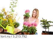 Купить «Радостная светловолосая девушка держит цветочный горшок», фото № 3213792, снято 30 апреля 2010 г. (c) CandyBox Images / Фотобанк Лори