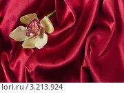 Купить «Цветок орхидеи на красном шёлке», фото № 3213924, снято 15 ноября 2011 г. (c) Инга Дудкина / Фотобанк Лори