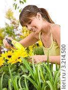Купить «Девушка опрыскивает цветы подсолнуха», фото № 3214500, снято 1 мая 2010 г. (c) CandyBox Images / Фотобанк Лори