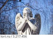 Купить «Ангел», фото № 3217456, снято 29 января 2012 г. (c) Parmenov Pavel / Фотобанк Лори