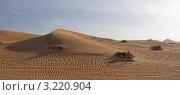 Купить «Дюны пустыни Руб-эль-Хали. ОАЭ.», фото № 3220904, снято 4 января 2012 г. (c) GrayFox / Фотобанк Лори