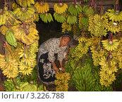 Бананы на рынке и продавщица, г. Баликпапан, Калимантан, Индонезия (2008 год). Редакционное фото, фотограф Антон Кротов / Фотобанк Лори