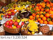 Купить «Яркие краски тропических фруктов», фото № 3230524, снято 27 декабря 2011 г. (c) Виктория Катьянова / Фотобанк Лори