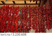 Купить «Сушеные жгучие красные перчики (capsicum annum)», фото № 3230608, снято 27 декабря 2011 г. (c) Виктория Катьянова / Фотобанк Лори