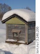 Купить «Зимовка пчёл», фото № 3240200, снято 10 февраля 2012 г. (c) Наталья Цветкова / Фотобанк Лори
