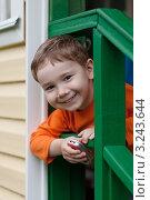 Купить «Довольный улыбающийся мальчишка с мобильным телефоном выглядывает через перила лестницы дачного дома», эксклюзивное фото № 3243644, снято 26 июня 2011 г. (c) Родион Власов / Фотобанк Лори
