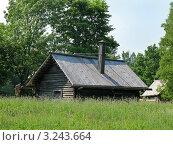 Витославицы (2011 год). Редакционное фото, фотограф Алина Анохина / Фотобанк Лори