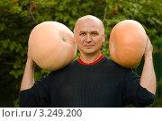 Мужчина с двумя тыквами сорта Стофунтовая. Стоковое фото, фотограф Зобков Юрий / Фотобанк Лори