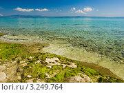 Купить «Эгейский морской пейзаж», фото № 3249764, снято 8 мая 2008 г. (c) Дмитрий Наумов / Фотобанк Лори