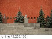 Купить «Некрополь у Кремлёвской стены. Могила Иосифа Сталина. Кремль. Москва. Россия», эксклюзивное фото № 3255136, снято 17 июля 2010 г. (c) lana1501 / Фотобанк Лори
