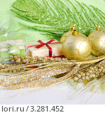 Купить «Новый год», фото № 3281452, снято 12 февраля 2012 г. (c) Липатова Ольга / Фотобанк Лори