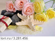 Купить «Аксессуары для ванны», фото № 3281456, снято 12 февраля 2012 г. (c) Липатова Ольга / Фотобанк Лори