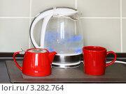 Купить «Веселый чайник с синей подсветкой», фото № 3282764, снято 20 февраля 2012 г. (c) Валерия Попова / Фотобанк Лори