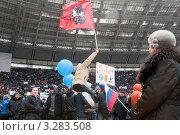 Купить «Москва. Митинг в поддержку В.В. Путина. 23 февраля 2012. Флаг Москвы», фото № 3283508, снято 23 февраля 2012 г. (c) Ирина Фирсова / Фотобанк Лори