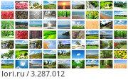 Много фотографий с природой, коллаж. Стоковое фото, фотограф Elnur / Фотобанк Лори