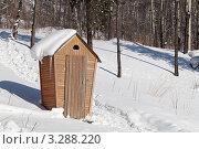 Купить «Деревенский туалет в лесу», фото № 3288220, снято 18 февраля 2012 г. (c) Игорь Долгов / Фотобанк Лори