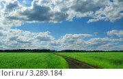 Купить «Летнее поле, таймлапс», видеоролик № 3289184, снято 13 января 2012 г. (c) Михаил Коханчиков / Фотобанк Лори
