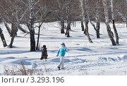 Купить «Семья на лыжной прогулке», фото № 3293196, снято 19 февраля 2012 г. (c) Роман Ушаков / Фотобанк Лори