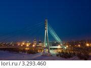 Купить «Тюмень.  Мост через реку Туру.», фото № 3293460, снято 19 февраля 2012 г. (c) Макаров Алексей / Фотобанк Лори
