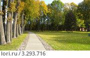 Купить «Бетонная дорожка в городском парке», фото № 3293716, снято 1 октября 2011 г. (c) Константин Кург / Фотобанк Лори