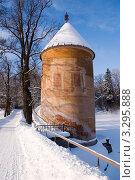 Купить «Пиль-башня. Павловск», фото № 3295888, снято 12 февраля 2011 г. (c) Светлана Кудрина / Фотобанк Лори