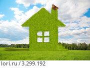 Купить «Домик из травы с бабочкой на трубе посреди зеленого поля», фото № 3299192, снято 25 марта 2019 г. (c) Losevsky Pavel / Фотобанк Лори