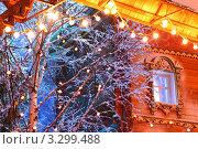 Купить «Новогодние гирлянды на дереве рядом с деревянным домом», фото № 3299488, снято 22 ноября 2010 г. (c) Losevsky Pavel / Фотобанк Лори