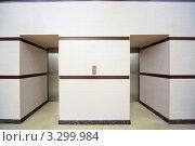 Два лифта с закрытыми металлическими дверями. Стоковое фото, фотограф Losevsky Pavel / Фотобанк Лори