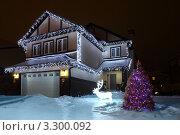 Купить «Украшенный гирляндой на Рождество дом, елка и олень в снегу ночью», фото № 3300092, снято 8 декабря 2019 г. (c) Losevsky Pavel / Фотобанк Лори