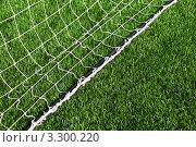 Купить «Белая футбольная сетка ворот на зеленой траве», фото № 3300220, снято 26 сентября 2010 г. (c) Losevsky Pavel / Фотобанк Лори