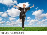 Купить «Девочка-подросток занимается ушу на зеленом лугу», фото № 3301584, снято 4 июня 2006 г. (c) Losevsky Pavel / Фотобанк Лори