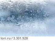 Купить «Замороженное стекло», фото № 3301928, снято 17 февраля 2012 г. (c) Александр Fanfo / Фотобанк Лори