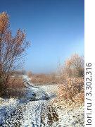 Дорога в снежный туман и зимняя радуга. Стоковое фото, фотограф Ольга Левонович / Фотобанк Лори