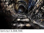 Выход на поверхность из системы катакомб под Одессой. Стоковое фото, фотограф Денис Тараскин / Фотобанк Лори