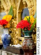 Кладбище в тайском храме (2011 год). Стоковое фото, фотограф Инна Касацкая / Фотобанк Лори