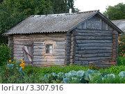 Купить «Деревенская избушка», фото № 3307916, снято 6 августа 2011 г. (c) Андрей Радченко / Фотобанк Лори