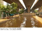 Купить «Наводнение в Таиланде», фото № 3323688, снято 2 октября 2011 г. (c) Виктор Савушкин / Фотобанк Лори