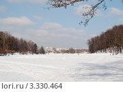 Царицынские пруды зимой. Стоковое фото, фотограф Сергей Родин / Фотобанк Лори