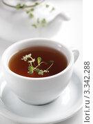 Купить «Чай с майораном в белой чашке», фото № 3342288, снято 4 октября 2011 г. (c) Stockphoto / Фотобанк Лори