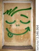 Купить «Граффити  на стене», фото № 3346964, снято 28 июня 2010 г. (c) Морковкин Терентий / Фотобанк Лори