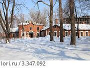 Купить «Старое здание 11 и 13 отделений Рязанской психбольницы», фото № 3347092, снято 10 марта 2012 г. (c) УНА / Фотобанк Лори