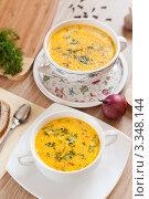 Купить «Аппетитный сырный суп с укропом», фото № 3348144, снято 15 марта 2012 г. (c) Володина Ольга / Фотобанк Лори