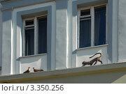 Купить «Скульптурная композиция», эксклюзивное фото № 3350256, снято 5 июня 2011 г. (c) Svet / Фотобанк Лори