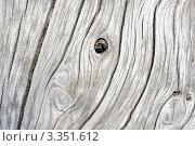 Купить «Серый деревянный фон», фото № 3351612, снято 28 сентября 2011 г. (c) Величко Микола / Фотобанк Лори