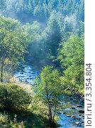 Купить «Горная река течет среди деревьев», фото № 3354804, снято 18 сентября 2011 г. (c) Юрий Брыкайло / Фотобанк Лори