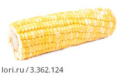 Купить «Желтый кукурузный початок», фото № 3362124, снято 16 февраля 2012 г. (c) Ivan Korolev / Фотобанк Лори
