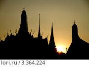 Вечерние силуэты Бангкока (2011 год). Стоковое фото, фотограф Инна Касацкая / Фотобанк Лори