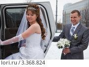 Купить «Невеста садится в лимузин», фото № 3368824, снято 26 февраля 2012 г. (c) Кекяляйнен Андрей / Фотобанк Лори